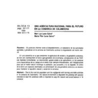 462.pdf