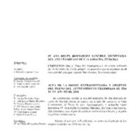 Pleno 2004.pdf