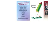 16_programa de fiestas del santo cristo 2008.pdf